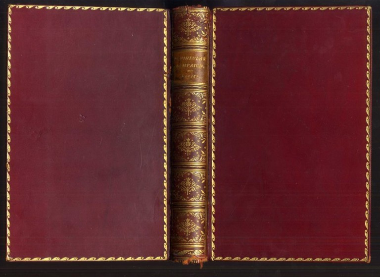 A Narrative of the Peninsular Campaign 1807-1814, Its Battles and Sieges. Sir W. F. P. Napier, William Dobson, abr.