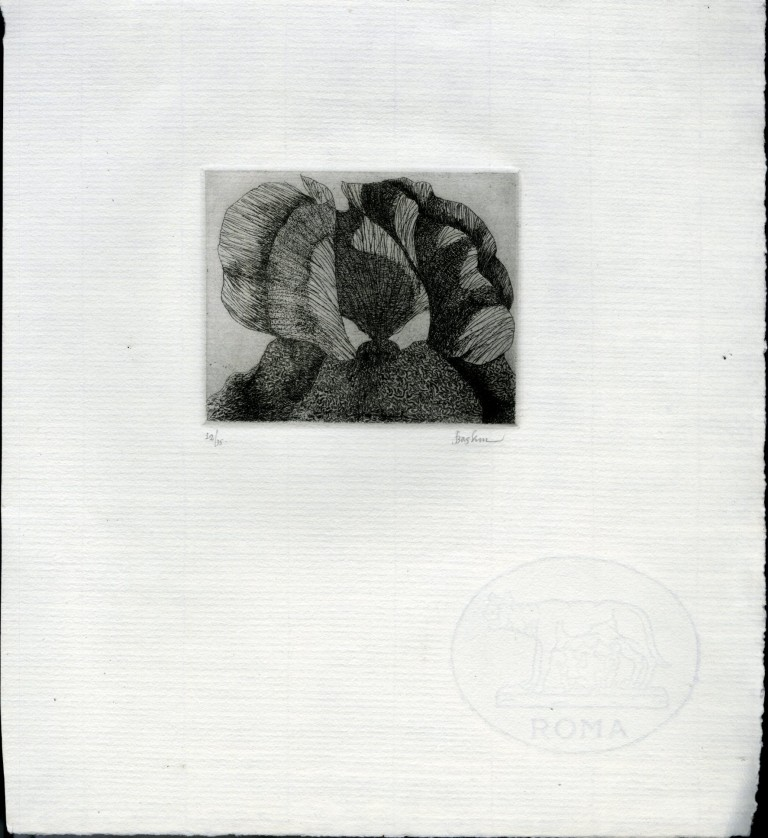 Signed and Numbered Etching on Thick Laid Roma Paper. Baskin Leonard.
