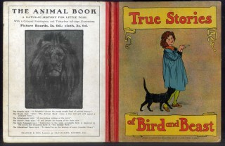 True Stories of Bird and Beast: A Picture Book for Little Folk. anon.