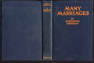 Many Marriages. Anderson Sherwood.
