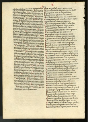 Puncia [incunabula leaf from the 1493 edition]