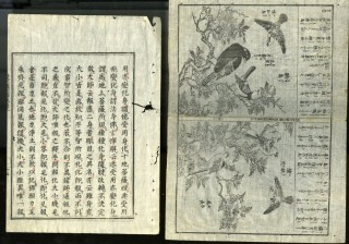 Specimens of Oriental MSS and Printing. Society of Foliophiles.